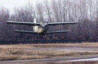 Услуги по весенней подкормке пшеницы и рапса авиацией — самолет Ан-2 и вертолет Ми-2